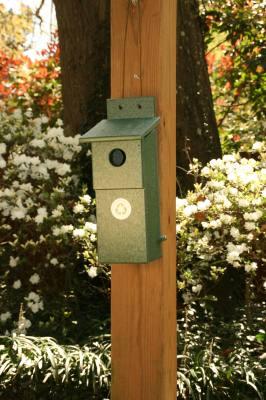 Recycled Bluebird Nesting Box Hunter Green