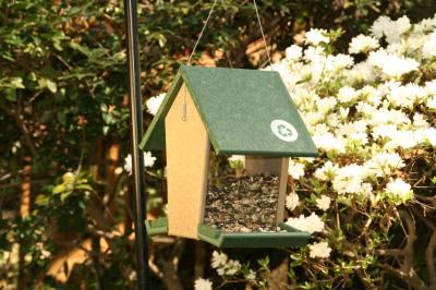 Recycled Tall Hopper Bird Feeder 4 Quart -HunterGreen/Driftwood