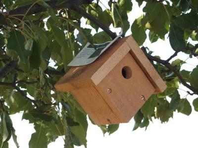 Cedar Mini Wren House