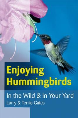 Enjoying Hummingbirds