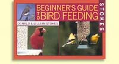 Beginner Guide to Bird Feeding