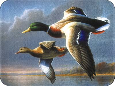 Flying Mallards - Medium