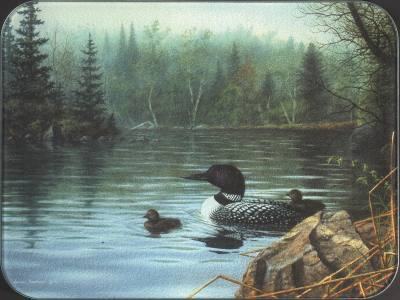 Loons in the Mist - Small