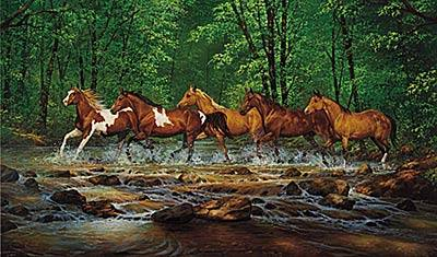 Spring Creek Run (Horses) - Medium