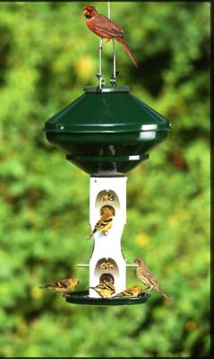 Vari-Crafts Avian Mixed Seed Bird Feeder