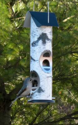 Birch Log – Mixed Seed - Wild Bird Feeder
