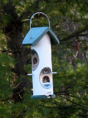 Recycled Roof Seed Tube Bird Feeder 1 Qt.