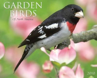 2010 Garden Birds Calendar