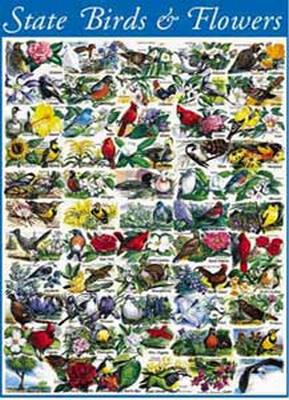 State Birds and Flowers 1000 Piece Jigsaw Puzzle