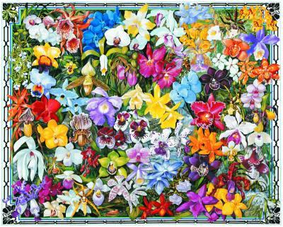 Orchids 1000 Piece Jigsaw Puzzle