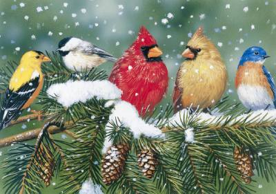 Cardinals and Friends 550 Piece Jigsaw Puzzle