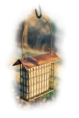 Copper Top Single Suet Cage