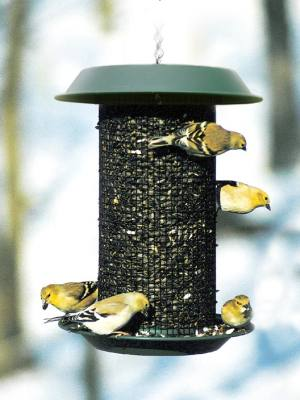 Magnum Sunflower Feeder 4 Qt.