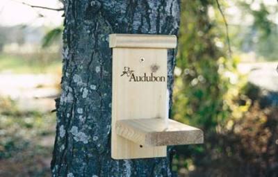 Squirrel Munch House