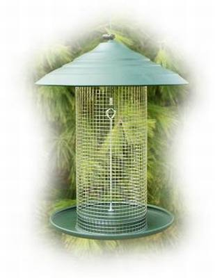 Green Steel Magnum Sunflower Feeder