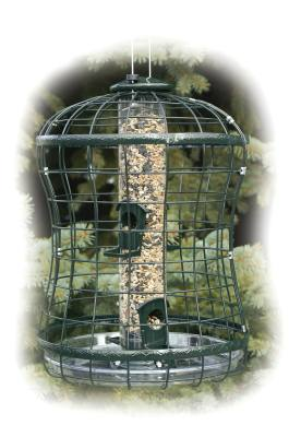 Caged Seed Tube Feeder
