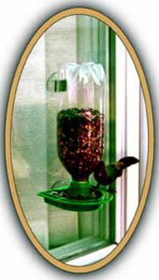 Soda Bottle Window Feeder Green