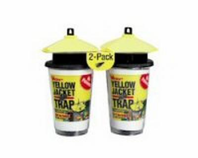 Yellow Jacket Trap Bait