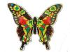 Large Multi-Colored Butterfly Door Screen Saver