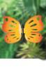 Orange Butterfly Small