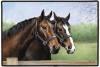 Caroline's Horses Doormat