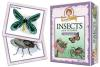 Prof Noggins Insects & Spiders