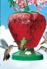 Strawberry Hummingbird Feeder 48 oz