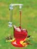 Window Red Bird Hummingbird Feeder