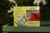 Eco-Friendly Recycled Bird Feeder Kit For Kids