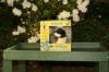 Eco-Friendly Recycled Bird Houser Kit For Kids