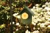 Fruit Feeder-Hunter Green