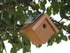 Cedar Mini Wren House
