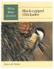 Wild Bird Guides-Black Capped Chickadee