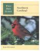 Wild Bird Guides-Northern Cardinal