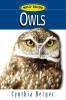 Wild Guide Owls