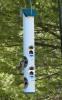 Mixed Seed Tube Bird Feeder 3 qt Green