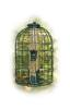 Audubon Caged Seed Tube Feeder